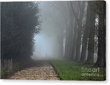 On An Autumn Day In The Mist Canvas Print