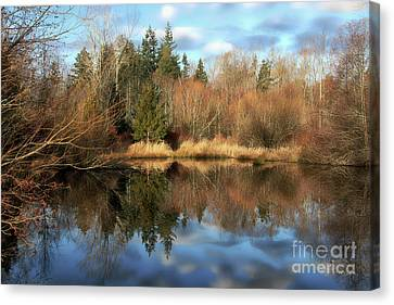 Cougar Pond Canvas Print by Cheryl Rose