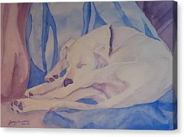 On Fallen Blankets Canvas Print