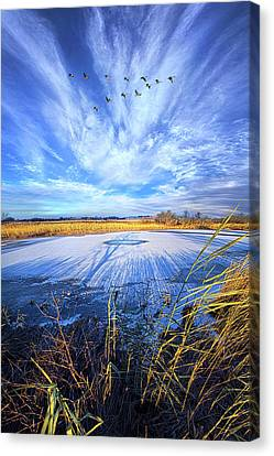 Canvas Print featuring the photograph On Frozen Pond by Phil Koch
