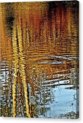 On Golden Pond Canvas Print by Carol F Austin