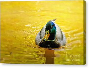 On Golden Pond Canvas Print by Lois Bryan