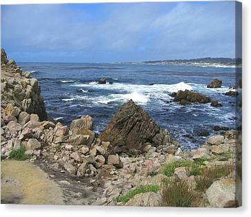 Canvas Print featuring the photograph On Monterey Bay Near Pebble Beach by Don Struke