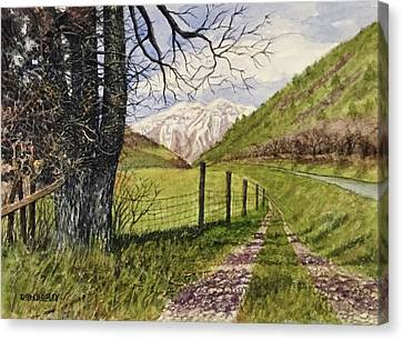 On South Fork Road Canvas Print by Don Bosley