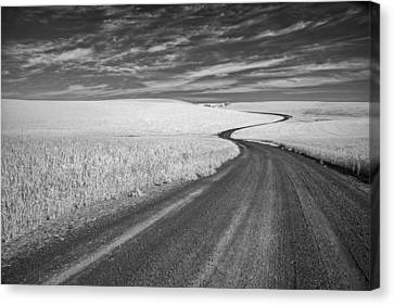 On The Back Road Canvas Print by Jon Glaser