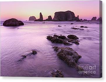 On The Beach At Bandon, Or Canvas Print by Masako Metz