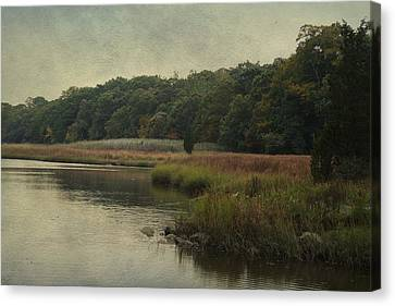 Canvas Print featuring the photograph On The Brink Of Winter by Rosemary Aubut