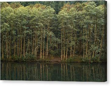 On The Clackamas Canvas Print by Larry Darnell