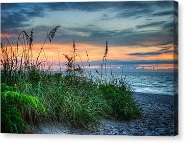 On The Edge Of Sunrise Canvas Print by Debra and Dave Vanderlaan