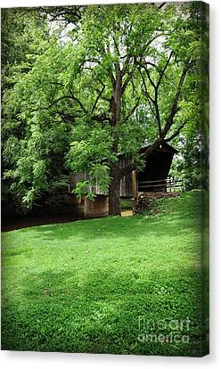 Split Rail Fence Canvas Print - On The Green by Eric Liller