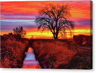 Canvas Print featuring the photograph On The Horizon by Greg Norrell
