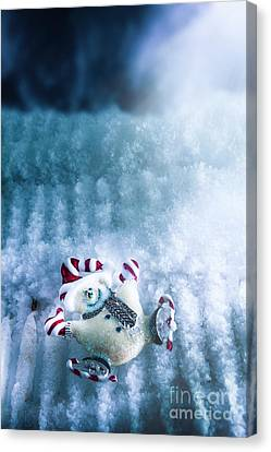 Gloves Canvas Print - On The Ice by Jorgo Photography - Wall Art Gallery