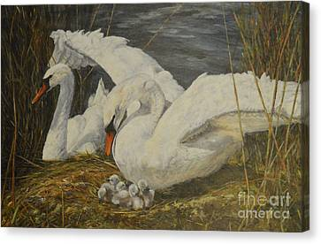 On The Nest Canvas Print by Beatrice Cloake