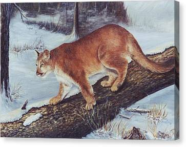 On The Prowl Canvas Print by Lynne Parker