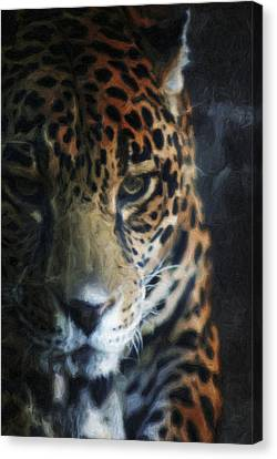 On The Prowl Canvas Print by Trish Tritz
