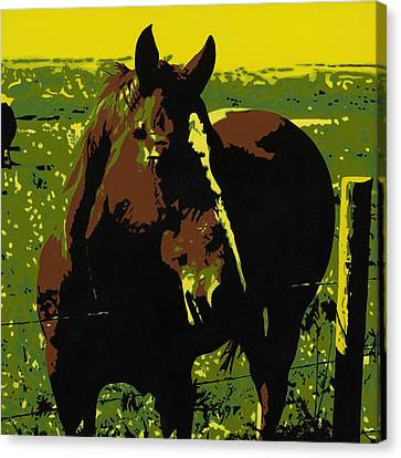 On The Range - Red Canvas Print by Sonja Olson