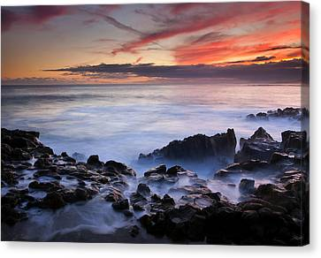 On The Red Rocks Canvas Print by Mike  Dawson