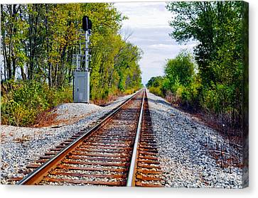 On The Right Track Canvas Print by Brittany H