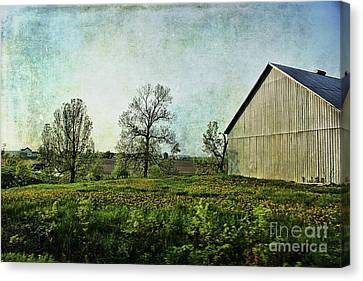 Canvas Print featuring the photograph On The Road Again - Ml03 by Aimelle
