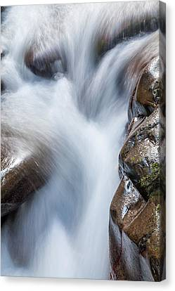 Williams River Canvas Print - On The Rocks by Az Jackson