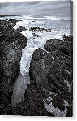 On The Rocks Canvas Print by Dave Bowman