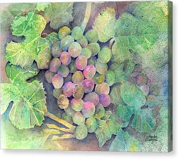 On The Vine Canvas Print by Arline Wagner