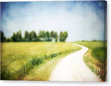 On The Way Through The Summer Canvas Print by Hannes Cmarits