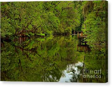 On The Way To The Suwannee River Canvas Print