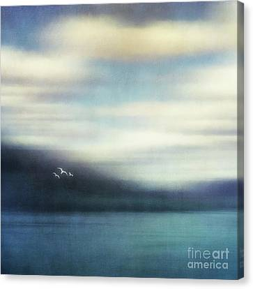 On The Wing Canvas Print by Priska Wettstein