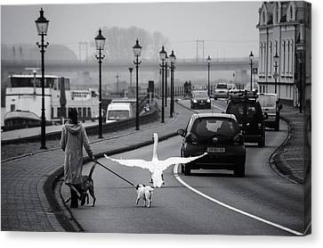On The Wrong Side Of The Road Canvas Print by Gerard Jonkman