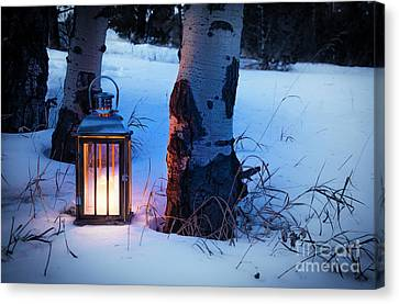 Canvas Print featuring the photograph On This Winter's Night... by The Forests Edge Photography - Diane Sandoval