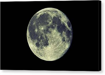 Once In A Blue Moon Canvas Print by Candice Trimble