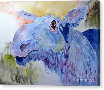 Once In A Blue Moose Canvas Print by Sandy McIntire