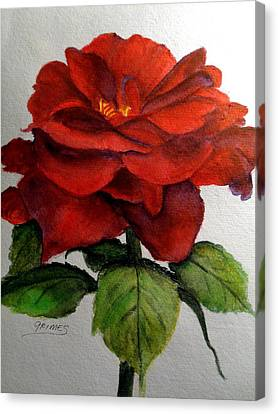 One Beautiful Rose Canvas Print by Carol Grimes