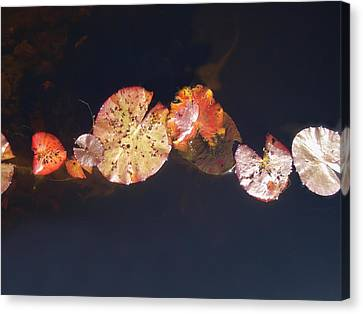 One By One Canvas Print