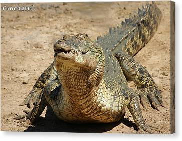 Canvas Print featuring the photograph One Crazy Saltwater Crocodile by Gary Crockett