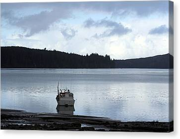 One Fine Day Canvas Print by Holly Ethan