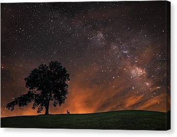 One Lonely Summer Evening Canvas Print by Shan Huang