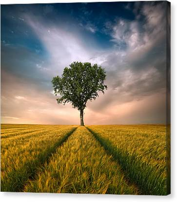 Lonely Canvas Print - One by Piotr Krol (bax)