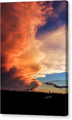 One Tall Sunset Canvas Print