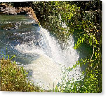 One Waterfall In Iguazu Falls National Park-argentina  Canvas Print by Ruth Hager