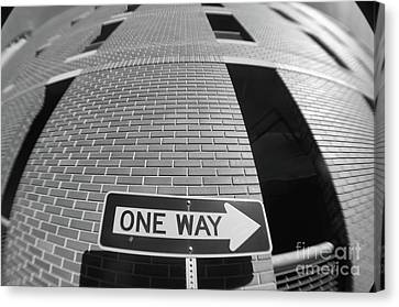 One Way Or Another Canvas Print