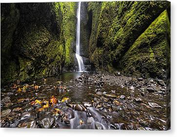 Oneonta Gorge Canvas Print by Mark Kiver