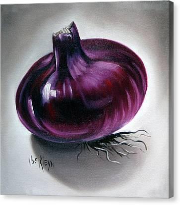 Onion Canvas Print by Ilse Kleyn