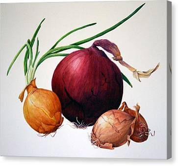 Onion Medley Canvas Print by Margit Sampogna