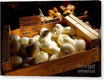 Onions Blancs Frais Canvas Print by Olivier Le Queinec