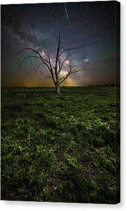 Canvas Print featuring the photograph Only by Aaron J Groen