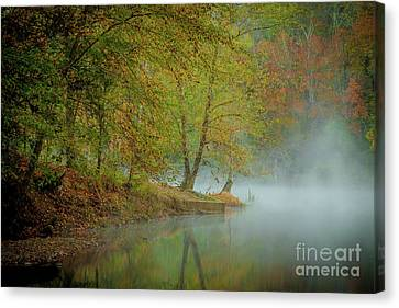 Canvas Print featuring the photograph Only If I Go by Iris Greenwell