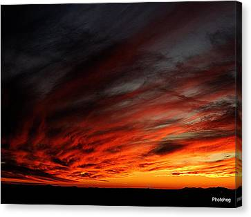 Only In The Desert Canvas Print by Adam Jones