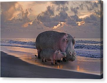 Only On Topsail The Best Kept Secret Canvas Print by Betsy Knapp